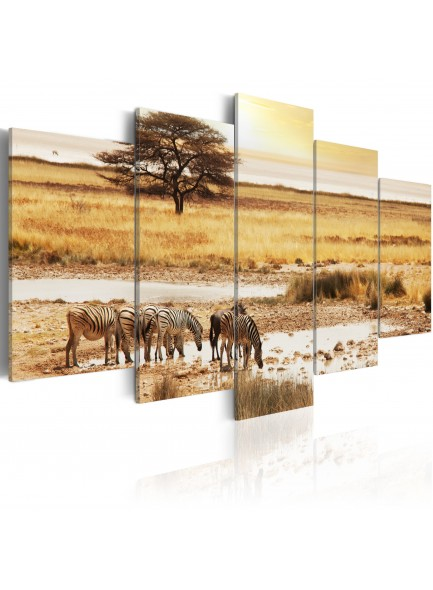 Foto schilderij - Zebras on a savannah