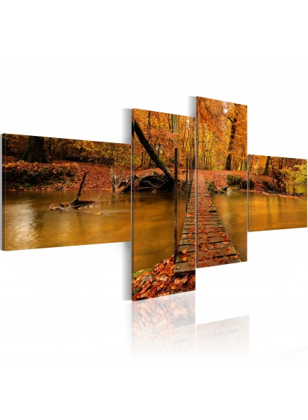Foto schilderij - A footbridge over a forest stream