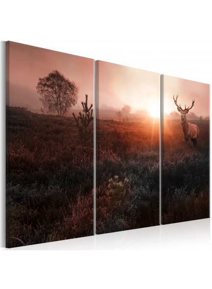 Foto schilderij - Deer in the Sunshine I