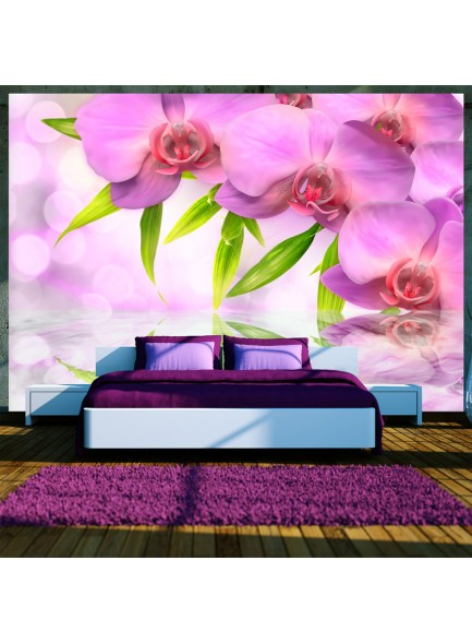Fotobehang - Orchids in lilac colour