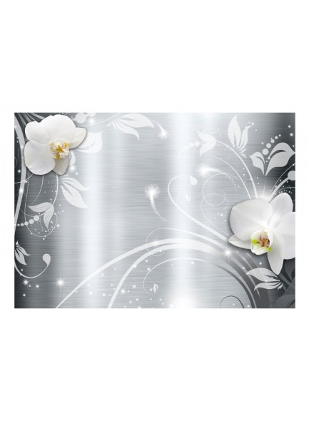 Fotobehang - Orchids on steel