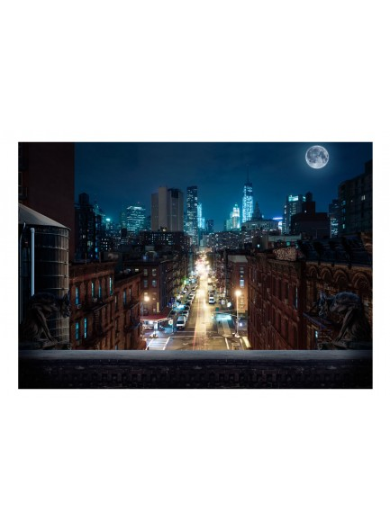 Fotobehang - Sleepy New York